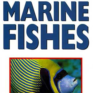 Marine Fishes 500 Aquarium Species