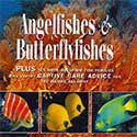 Angelfishes and Butterflyfishes