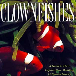 Clownfish Guide