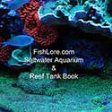 FishLore's Saltwater Aquarium Book