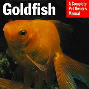 Goldfish Owner's Manual