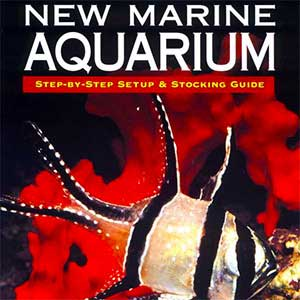 New Marine Aquarium