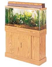 rectangular aquarium