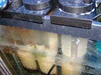biopellet reactors in sump