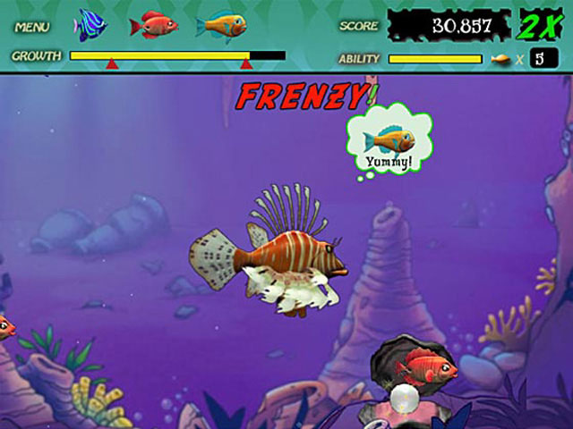 Feeding frenzy fish game for Fish and game