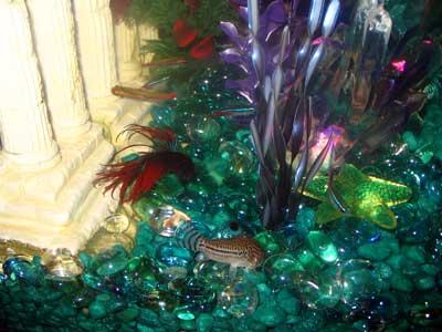 Lisa's Fish Tank