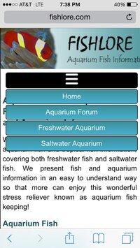 ImageUploadedByFish Lore Aquarium Fish Forum1433551133.173289.jpg