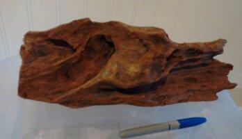 Driftwood 3.jpg
