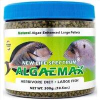 algae max.jpg