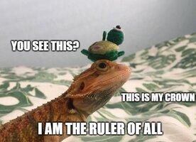 the ruler of everythin.jpg