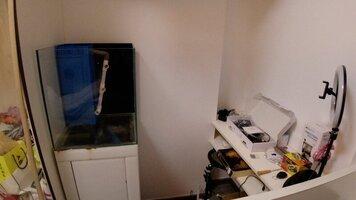 fishtank-corner-jpg.jpg