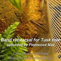 Fighting Fish and Fleetwood Mac