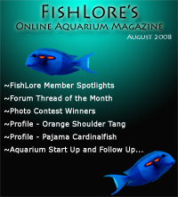 Aquarium Fish Magazine - August 2008