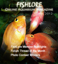 Fish and Aquarium Magazine - August 2012