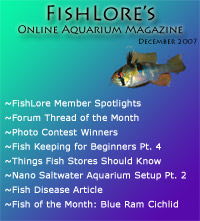 Aquarium Fish Magazine - December 2007