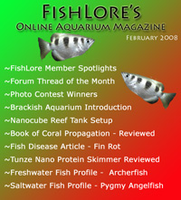 Aquarium Fish Magazine - February 2008