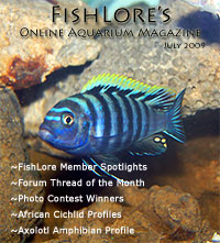 2009 Fish Lore Online Aquarium Magazine