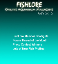 Fish and Aquarium Magazine - July 2012