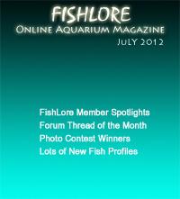 Fish and Aquarium Magazine - July 2012