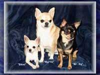 Karen's Dogs