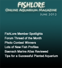 Fish and Aquarium Magazine - June 2012