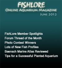 Fish and Aquarium Magazine - June 2012