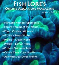 Aquarium Fish Magazine - March 2009