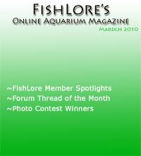 Aquarium Fish Magazine - March 2010