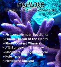 2012 Fish Lore Online Aquarium Magazine