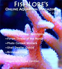Aquarium Fish Magazine - May 2009