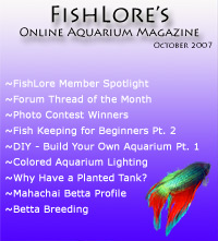 Online Aquarium Fish Magazine
