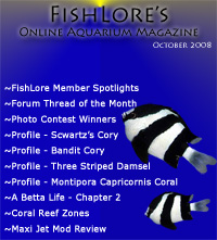 2008 Fish Lore Online Aquarium Magazine