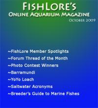 Aquarium Fish Magazine - October 2009