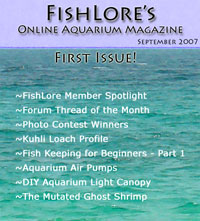 2007 Fish Lore Online Aquarium Magazine
